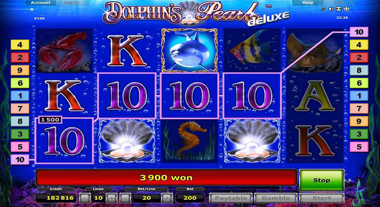 online casino reviewer dolphin pearls